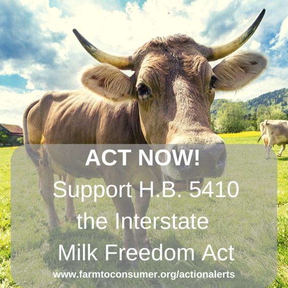 Milk Cow Action Alert