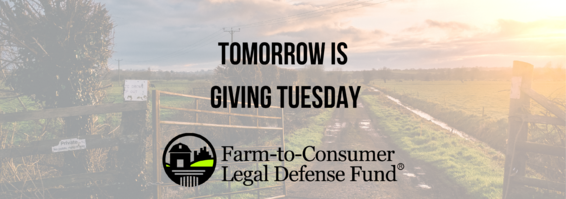 Giving Tuesday is tomorrow!